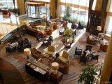 Sillas de los taburetes de barra/muebles de madera del vector del restaurante del hotel