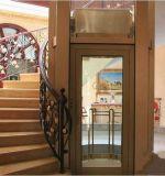 고품질 전기 주문을 받아서 만들어진 싼 엘리베이터에 의하여 사용되는 가정 건축 엘리베이터