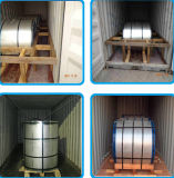 PPGI principais, colorem bobina de aço revestida/bobina de aço galvanizada Prepainted