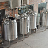 Stainlessl 강철 고압 약동된 화학 반응기