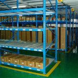 倉庫の記憶のための長いスパンラック