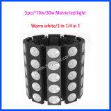 China-Matrix DMX 5PCS*10W wärmen weißes Licht