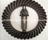 Mc806120 Kronrad-Ritzel für Fuso LKW-Teile