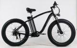 350W 500Wの脂肪質のタイヤの電気バイク