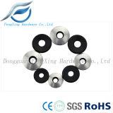 Rondelle de cachetage métallisée de l'acier inoxydable EPDM