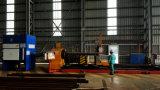Завершите автомат для резки плазмы CNC собрания пыли