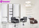 شعبيّة [هيغقوليتي] صالون أثاث لازم مرآة حلّاق صالون كرسي تثبيت ([ب2039])