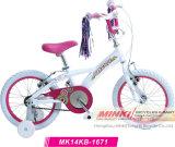 Una bicicletta dei 16 bambini di pollice (MK14KB-1671)
