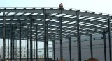 Bâtiment en acier de Steucture