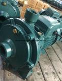 "Wedo1.5 "" Scm2-60b AC 시리즈 원심 수도 펌프 (2HP)"