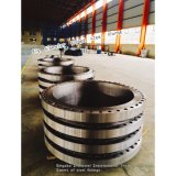 大きいサイズはANSI DINの標準によって溶接の首の鋼鉄フランジを造った