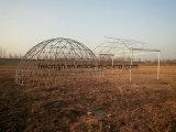 温室のためのドームの温室骨組及びフレーム