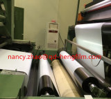 Película rígida transparente elevada Rolls do animal de estimação para a impressão