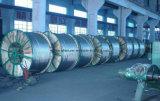 Condutor desencapado aéreo encalhado ACSR de ASTM alumínio padrão