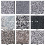Prix discount Natural Polished Granite Kitchen Tile pour Floor/Flooring
