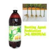 高品質の農業のための有機性液体の海藻肥料