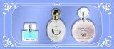 As mulheres perfumam com jogo do presente da fragrância e do perfume do baixo preço