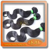 O Weave brasileiro colorido do cabelo é Standrad elevado