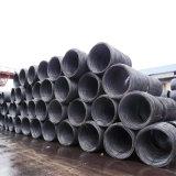 Alambre Rod del material de construcción del acero de carbón/bobina del alambre (SAE1006 SAE1008)