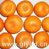 Fornecedor profissional para o mandarino fresco do bebê