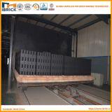 Eine komplette Zeile Lehm-Ziegelstein-Produktions-Maschine mit Brennofen und trocknender Zeile