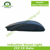 120W~180W Induction Street Light Road Lamp IP65 5years Warranty
