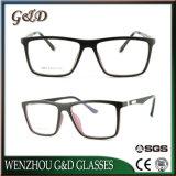 고품질 Ultem 알루미늄 사원 E051를 가진 플라스틱 Eyewear 안경알 광학 프레임