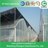 Moderner Entwurfs-einlagiges Gewächshaus-Plastikfilm-grünes Haus
