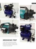 (SDP600-3) Garten-Strahlen-automatische Wasser-Pumpe für aufladendruck