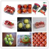 신선한 과일 감싸는 기계 주황색 레몬 감싸는 기계