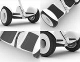 Xiaomi Ninebot Selbstfahrer-Roller mit Rad zwei