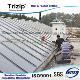 Профессиональная команда строения, стабилизированная система крыши