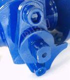JIS 10kのレバーのWcbのフランジの浮遊球弁