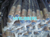 Hose hydraulique Assembly, High Pressre Hose avec Fittings