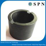 Anelli anisotropi polari del magnete del ferrito duro di ceramica per il motore