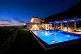 Indicatore luminoso solare della lampada della piscina LED (LED di galleggiamento chiaro)