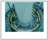 Telar medio de alta velocidad de la circular de la Seis-Lanzadera del modelo GS-Yzj-6 (8) -1350b