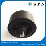 Harte Ferrit-Einspritzung-geklebter Multipolmagnet für Motor