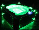 호화스러운 온수 욕조 성 텔레비젼 개인적인 마사지 기계 옥외 온천장