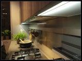2015 de Houten Keukenkast van de Douane van de Lak Welbom