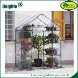 Onlylife普及したカスタマイズされたPVC透過小型庭の温室