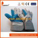 Guanto di cuoio blu di rinforzo Dlc327
