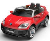 Conduite modèle de gosses de RC sur le véhicule