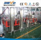 De automatische Machine van de Filter van het Water van het Systeem RO Zuivere