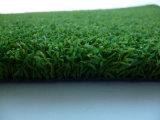 اصطناعيّة/عشب اصطناعيّة مع حالة أزيز [كب] لأنّ كرة قدم