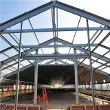 Niedrige Kosten-Stahlkonstruktion-Huhn-Stall für afrikanisches Land