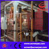 De volledig Automatische Roterende Verpakkende Machine van de Rek van de Pallet van het Wapen