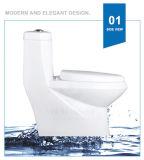 Weidansi cerámica de lavado de Down S-Trampa Inodoro de una pieza (WDS-T6112)