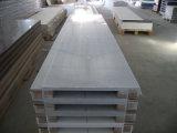 Weißes Blatt-feste acrylsaueroberfläche des China-Großverkauf-12mm (GBs)