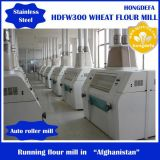 300ton Per Day Wheat Flour Mill
